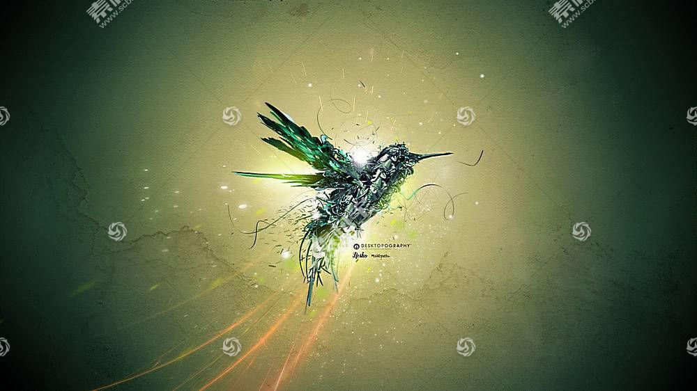 Desktopography,性质,鸟类,动物,数字艺术,蜂鸟102327