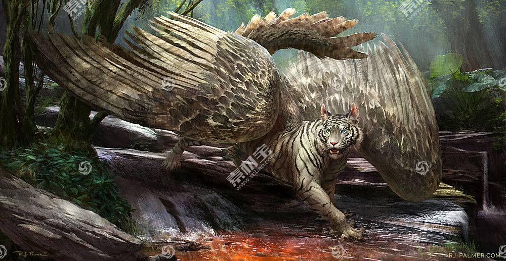 白老虎,翅膀,性质,动物610087