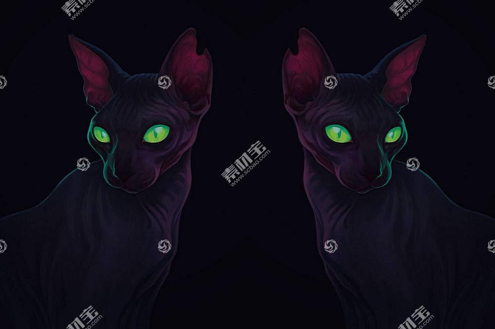 艺术品,绿眼睛,黑暗,猫,动物593241