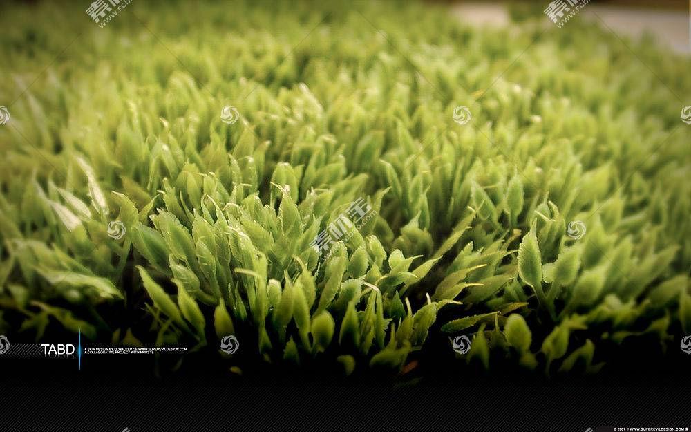 草,宏,活版印刷,植物11600图片