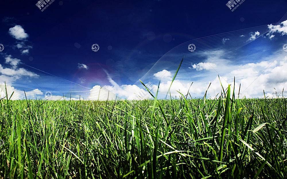 草,数字艺术,植物,天空,云3162图片