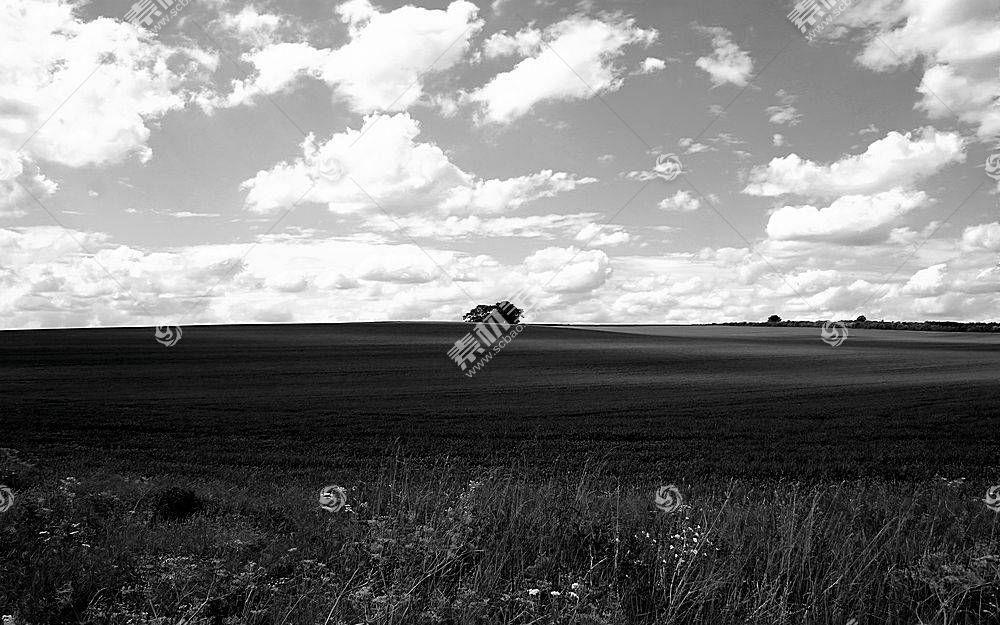 26631,地球,领域,壁纸图片