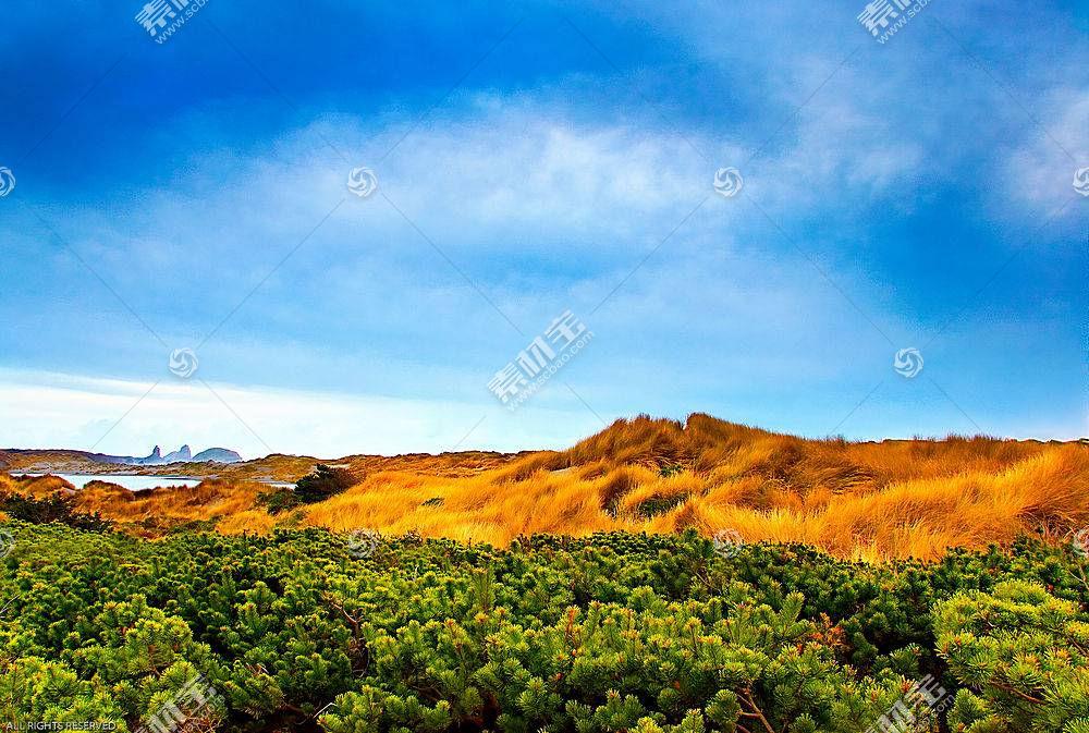 31219,地球,沙漠,壁纸图片
