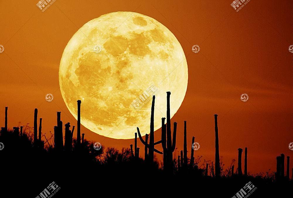 41774,地球,月球,壁纸图片
