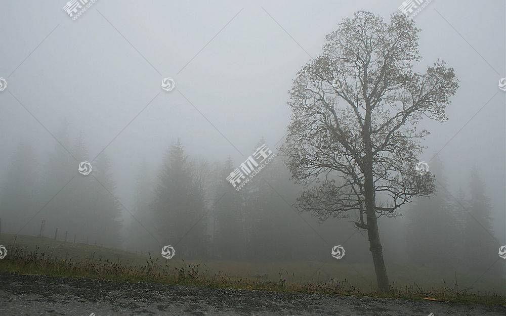 110689,地球,雾,壁纸图片