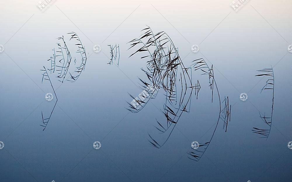 115940,地球,水,壁纸图片