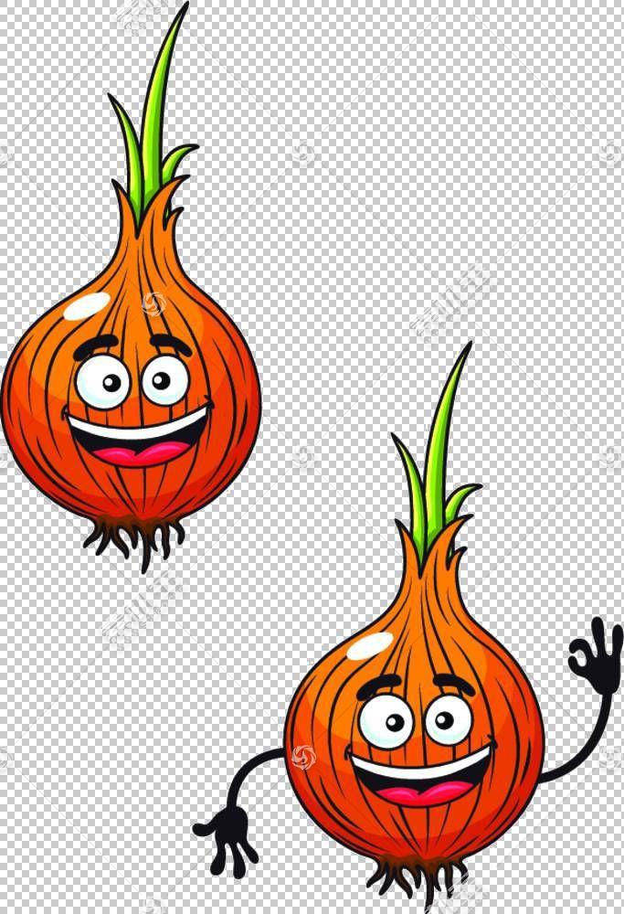 黄洋葱卡通皇室,卡通洋葱材料PNG剪贴画卡通人物,食品,摄影,橙,葫