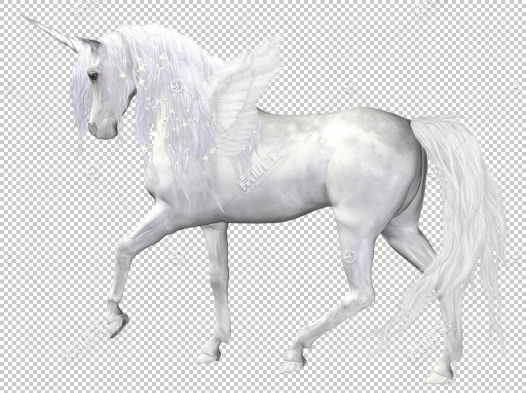 黑色独角兽马,幻想天使独角兽,白色独角兽PNG剪贴画摄影,母马,马T