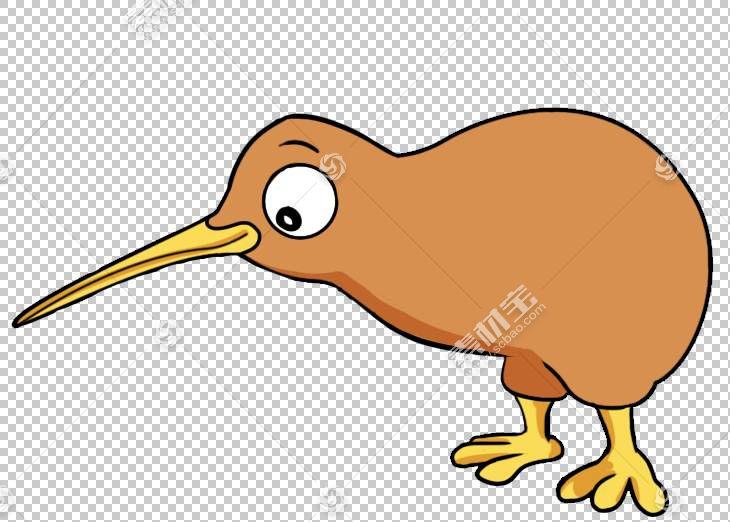 鸟卡通绘图,奇异鸟PNG剪贴画动物,动物群,野生动物,免版税,水果,