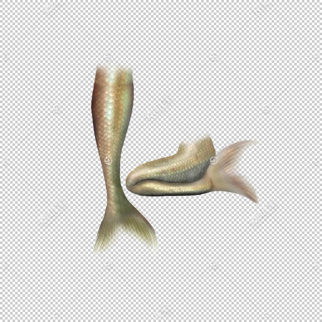 美人鱼尾巴,棕色美人鱼尾巴PNG剪贴画美丽的矢量,卡通,封装的Post
