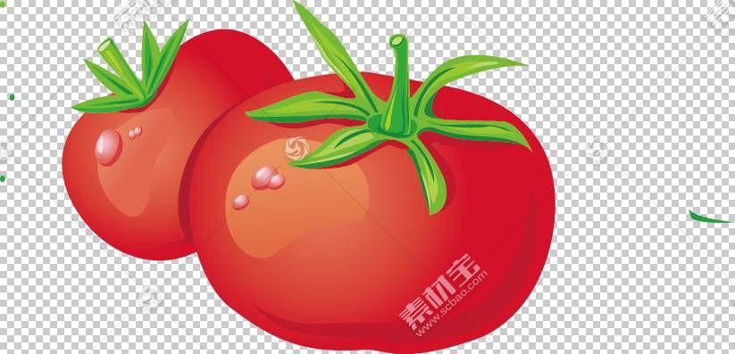 蔬菜番茄水果Vecteur,番茄PNG剪贴画天然食品,食品,茄属植物家庭,