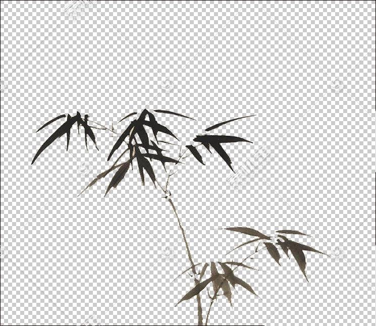 水彩畫竹子中國風水竹PNG剪貼畫葉,中國風格,分支機構,單色,顏色,