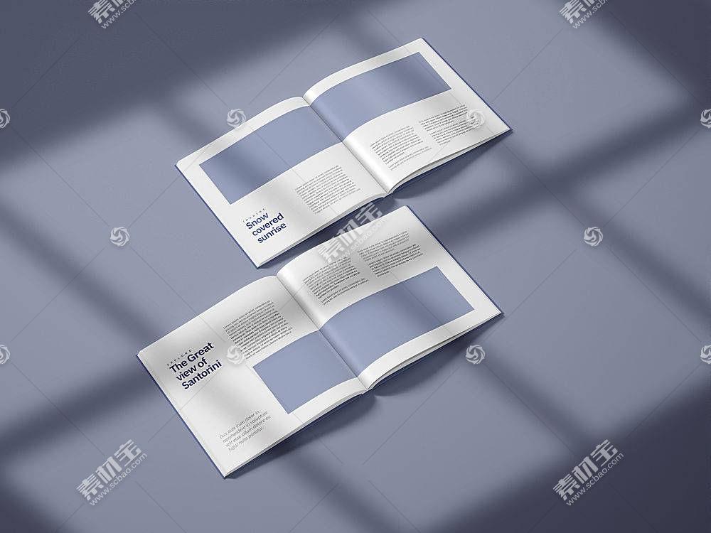 简洁时尚企业公司画册简介项目介绍通用样机