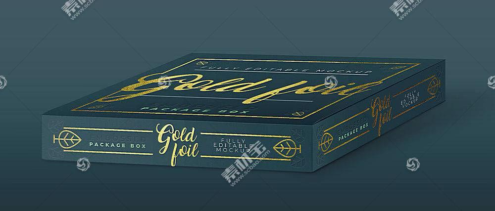时尚素雅深色盒子包装LOGO展示样机