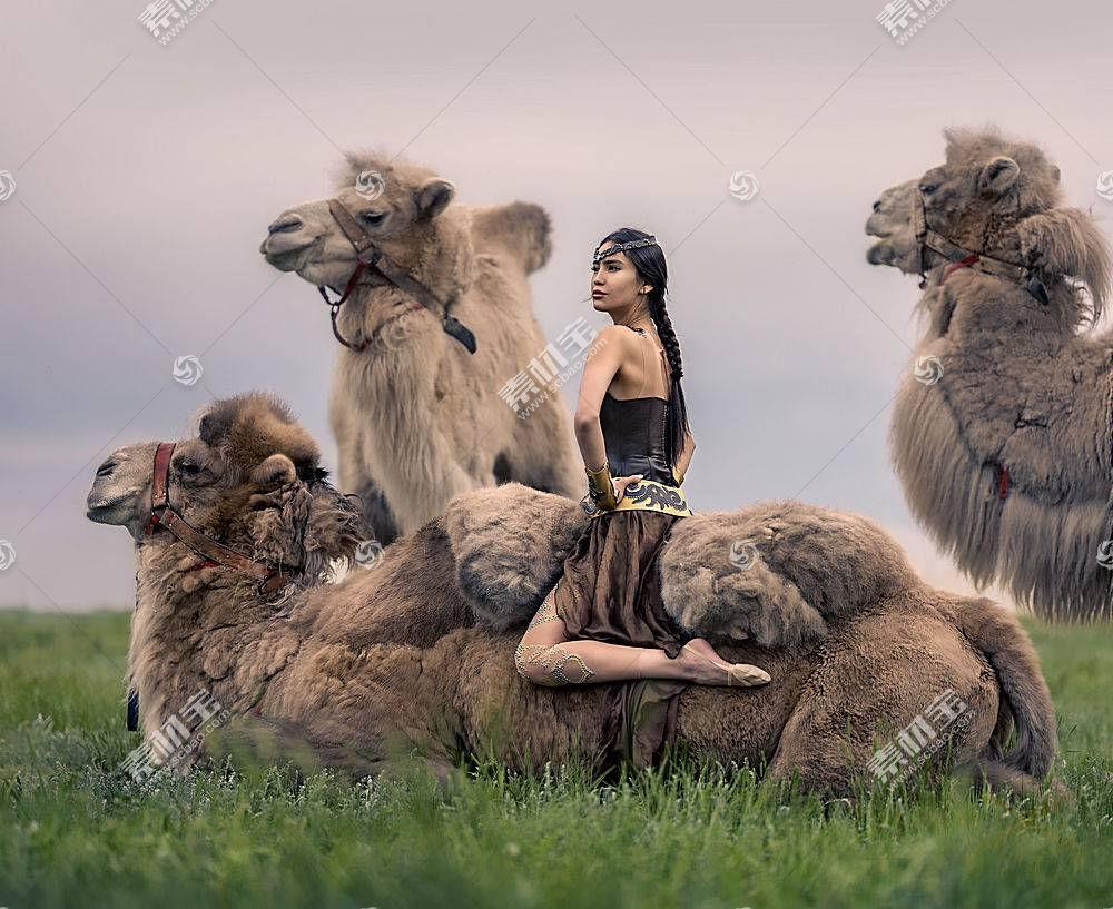 女人,亚洲的,女孩,骆驼,妇女,模特,辫子,黑色,头发,壁纸,