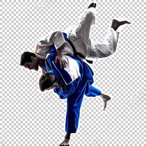 巴西柔道,统一,Dobok,服装,体育,体育,关节锁定,空手道,泰拳,黑带