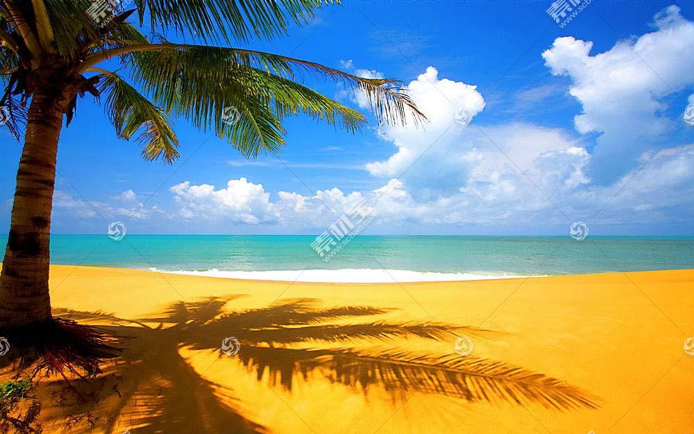 75219,地球,海滩,壁纸图片