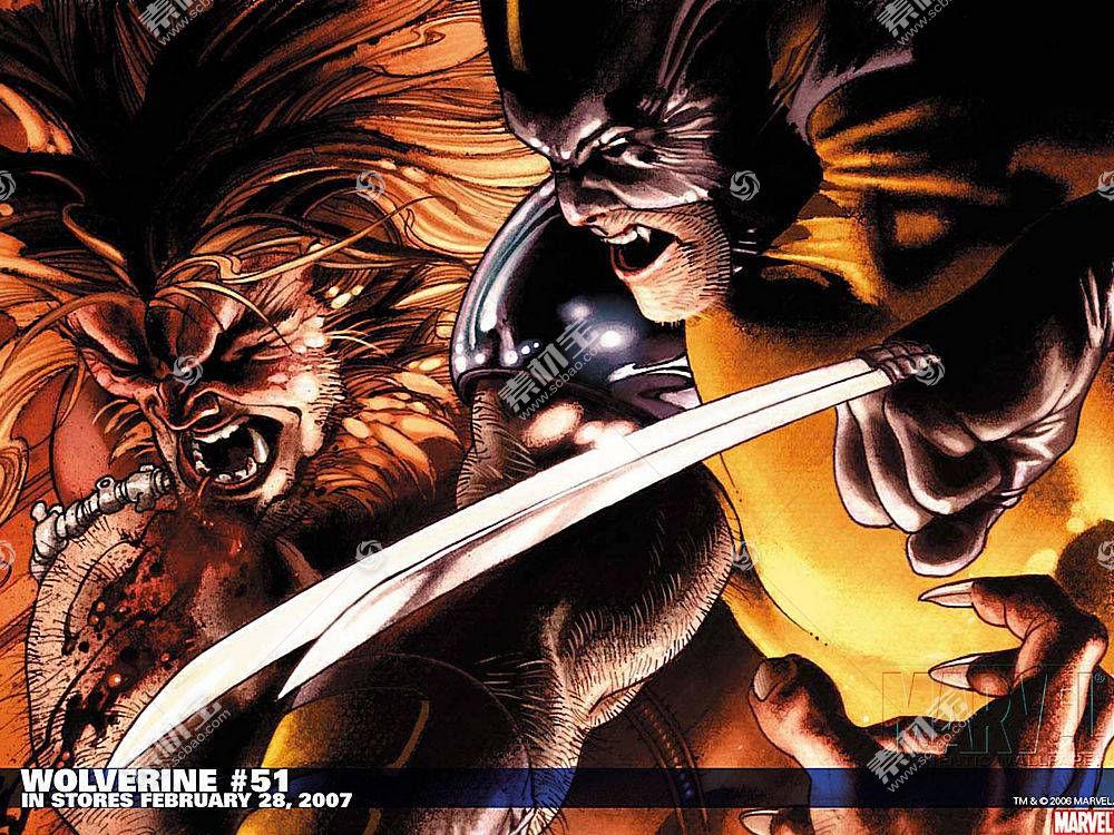 漫画壁纸,金刚狼,x战警,剑齿虎,壁纸(1)