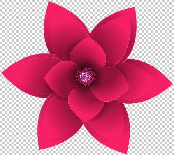 艺术装饰花,洋红色,切花,花瓣,植物,紫色,装饰艺术,RANGOLI,花园