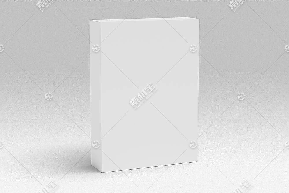 白色大气简约风元素框样机PSD文件