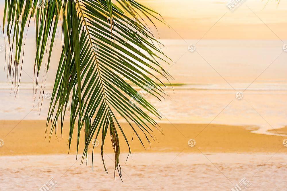 海边唯美落日