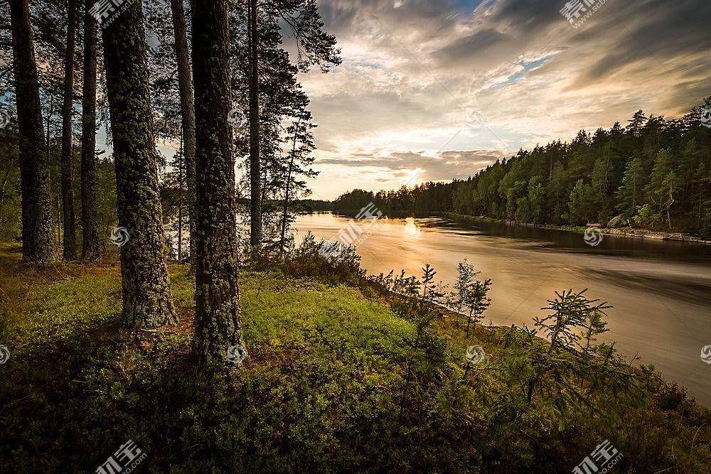 地球,河,云,自然,树,森林,壁纸,图片
