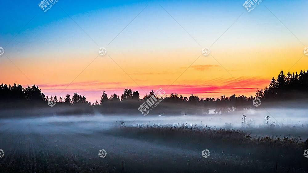 雾,自然,日出,领域,壁纸,图片