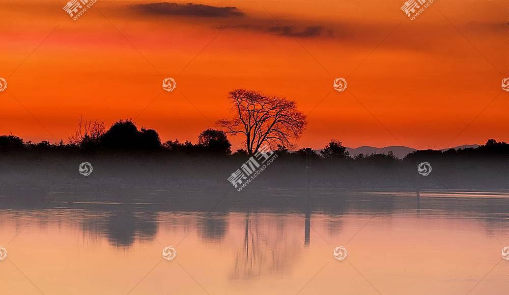 雾,自然,日落,橙色的,湖,反射,壁纸,图片