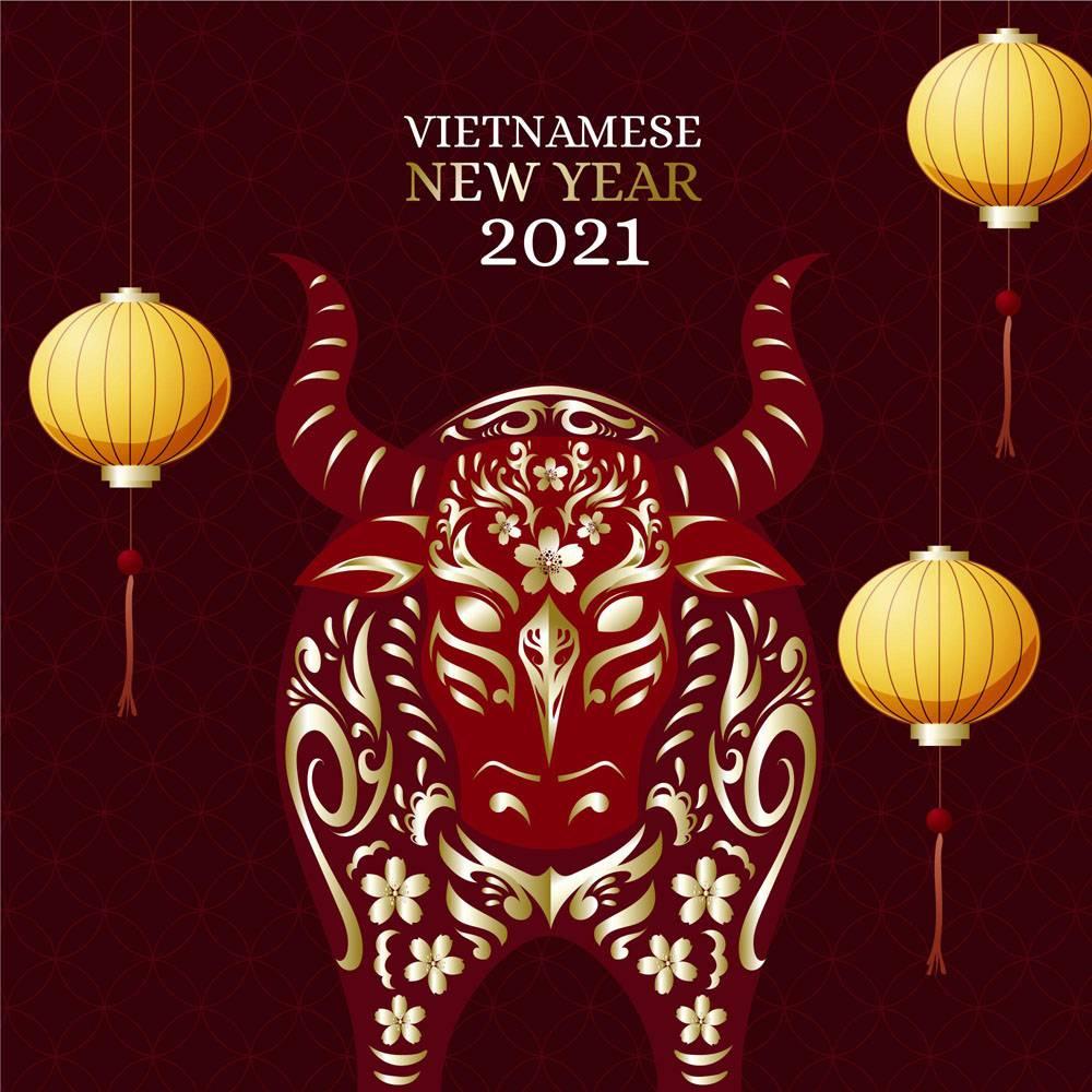 详细平淡越南新年