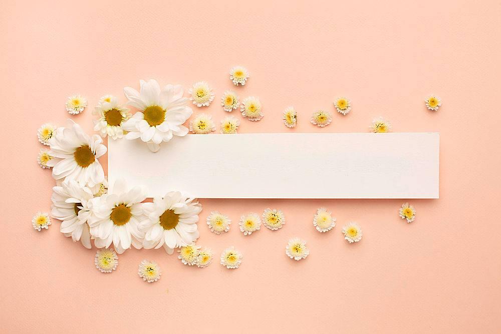 鲜花盛开的纸片_1247938001