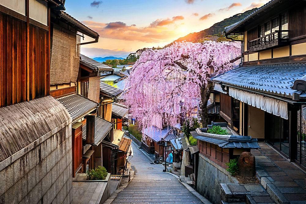 日本京都历史悠久的东山区春季樱花盛开_1082431401