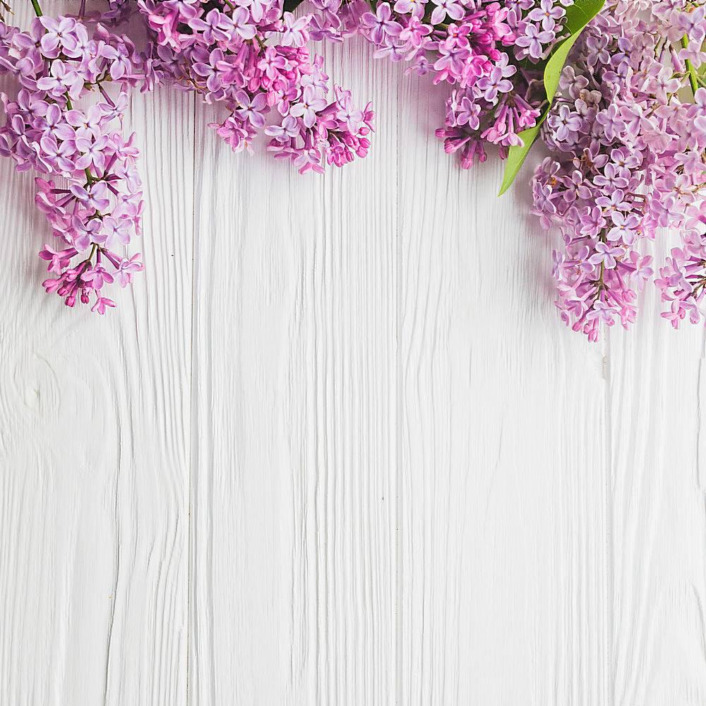 特写白色紫丁香_171938401