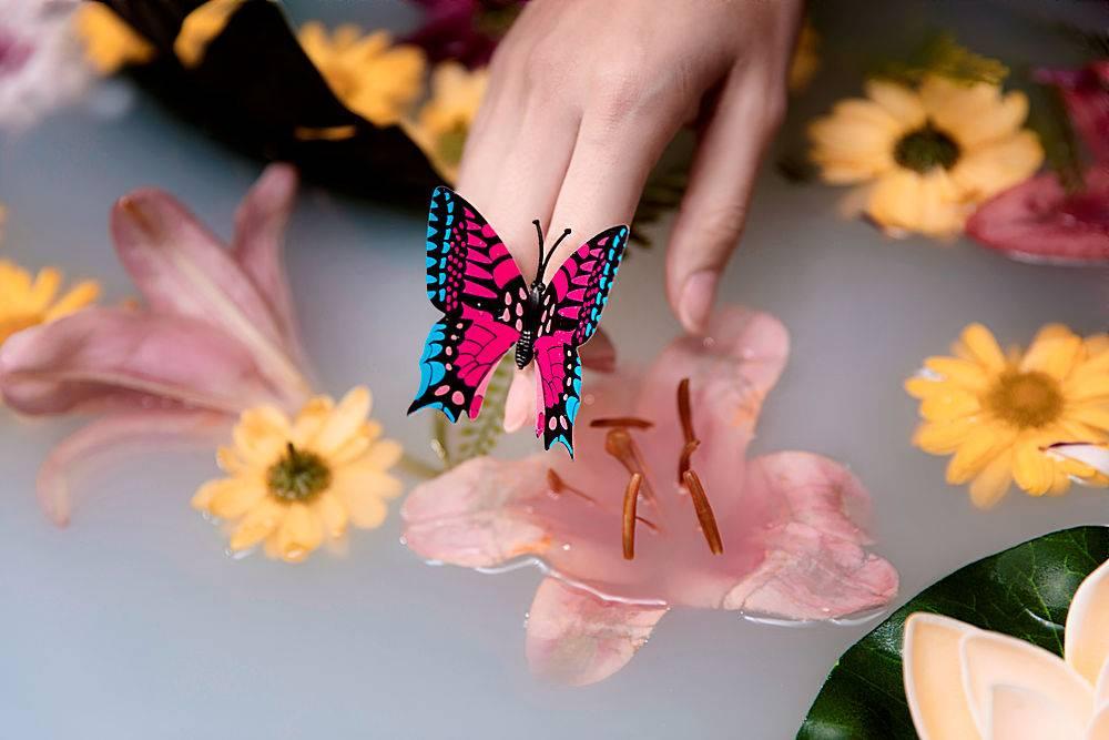 特写蝴蝶与药花_729139901
