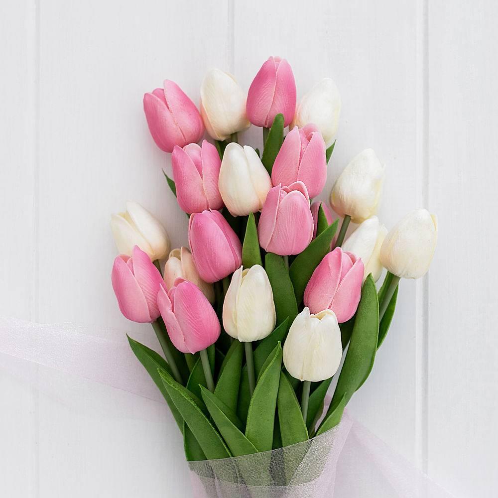 木质背景上的一束漂亮的粉色和白色郁金香_409083101