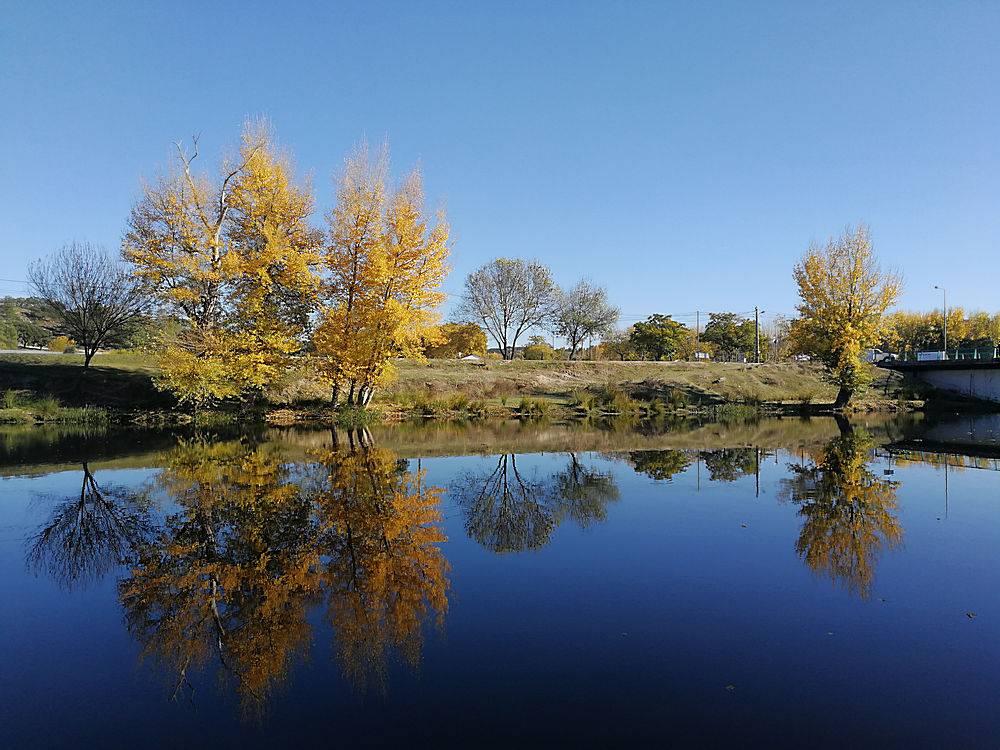 白天映照在湖面上的一系列树木的美丽风景_1018704701