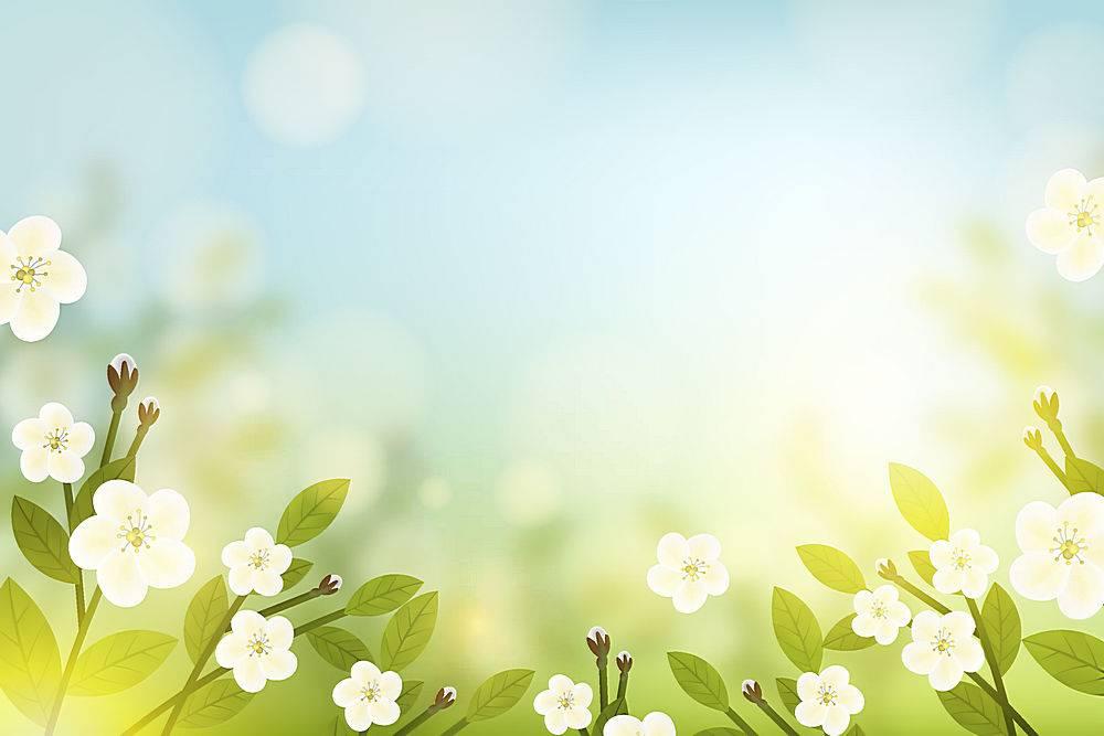 春天的花朵背景和蓝天