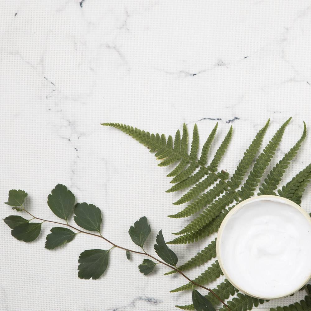 大理石背景上奶油和树叶的特写视图_5324797
