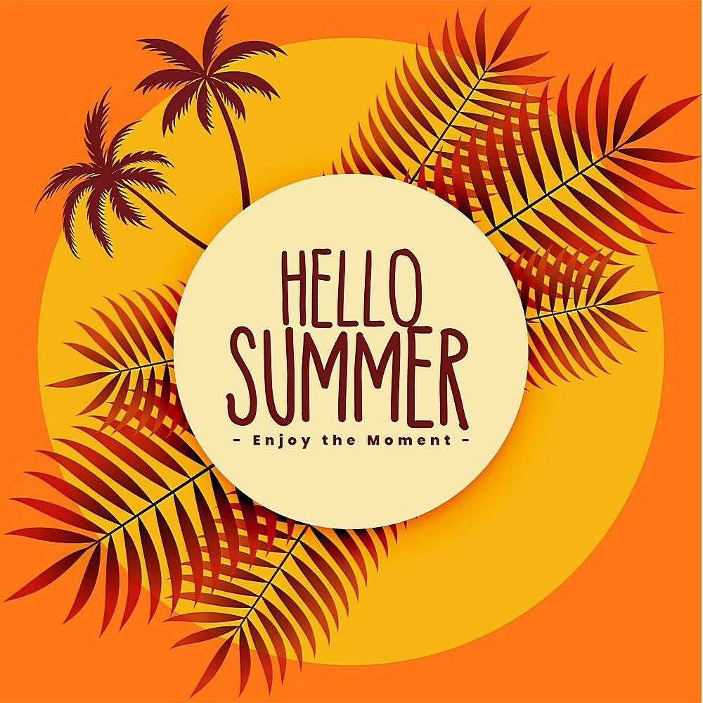 暖色热带夏季背景_4535020
