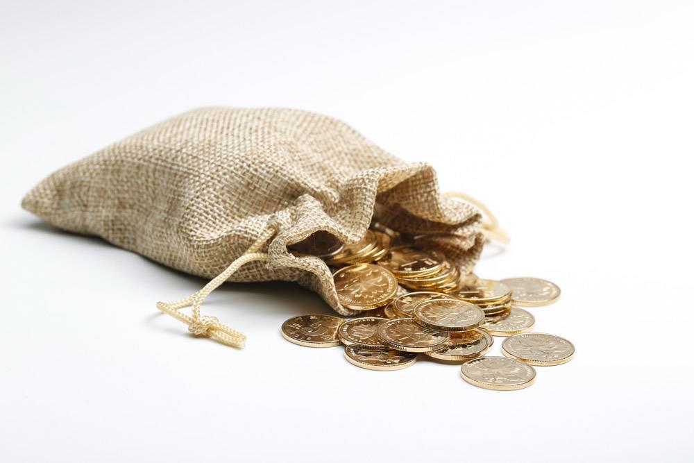 布袋装人民币金币_1193092