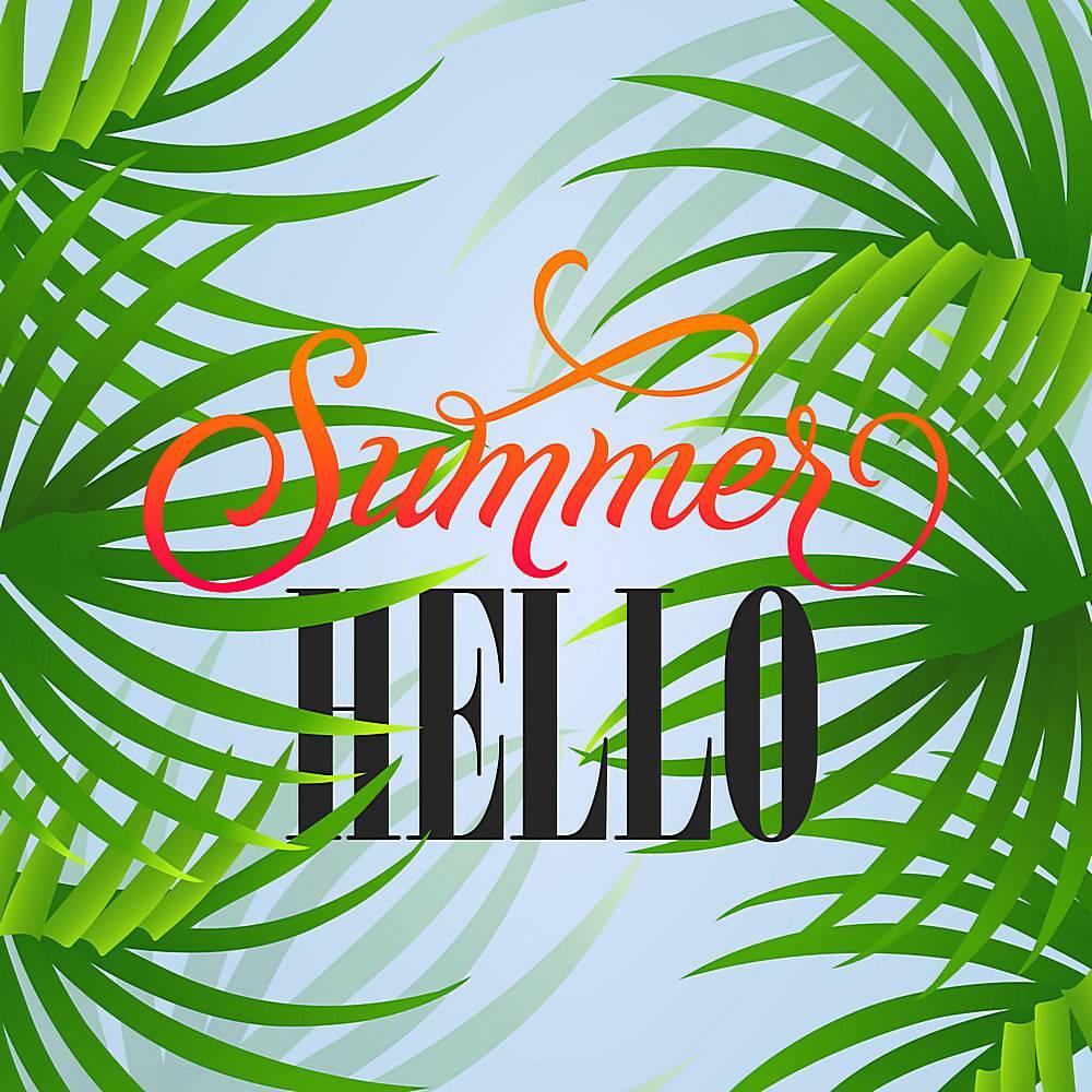 夏日问候字母以热带树叶为天空背景的度假_2541719