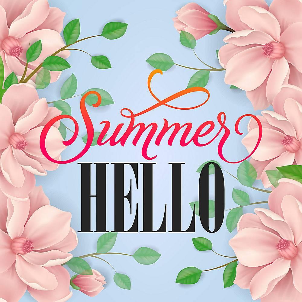 夏日问候字母柔和的背景粉红色的花朵和_2541718