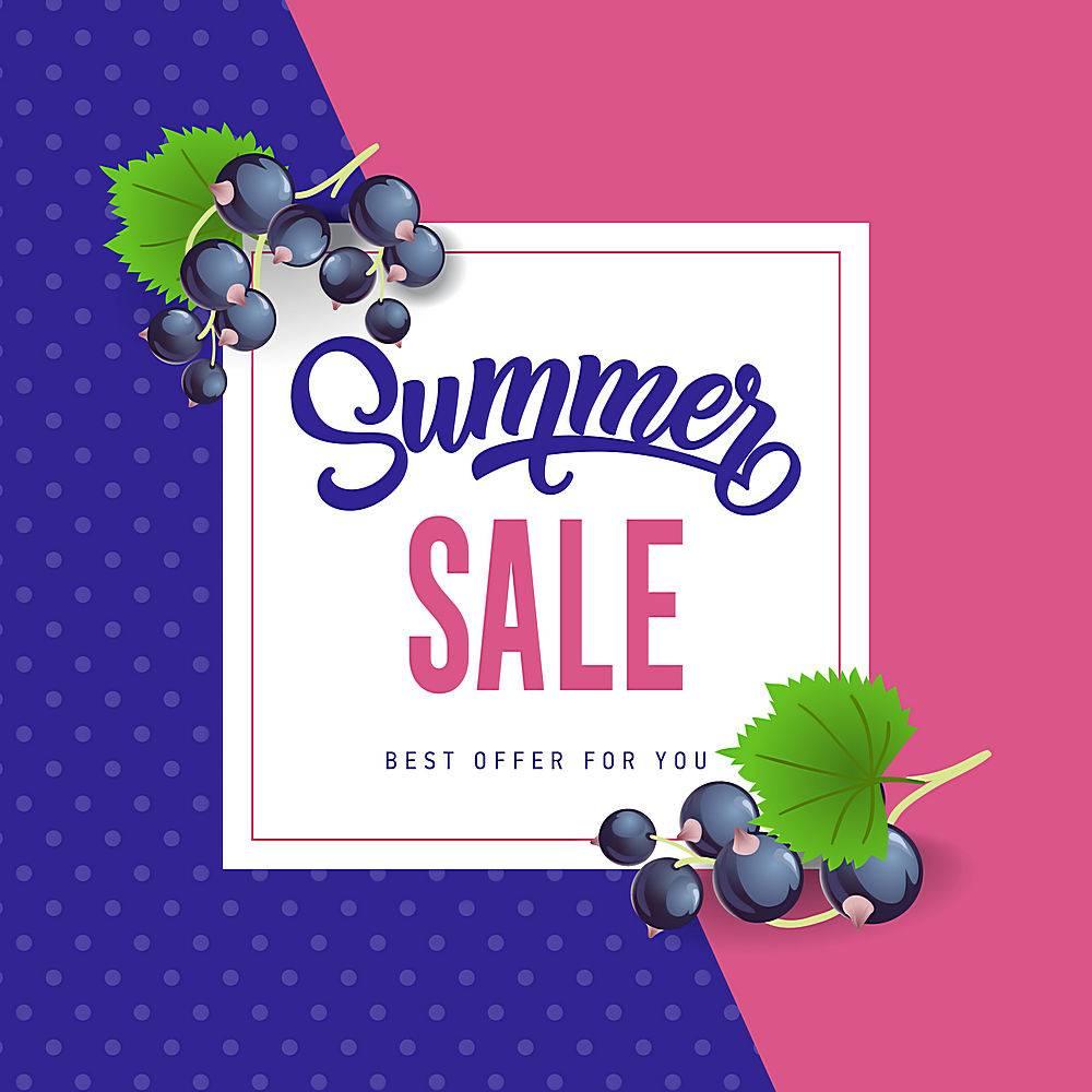 印有黑醋栗的夏季特卖会夏季优惠或销售广_2438912