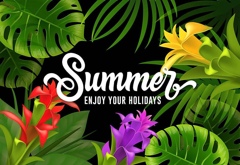 夏天好好享受你的假期吧上面写着热带树叶_2541710