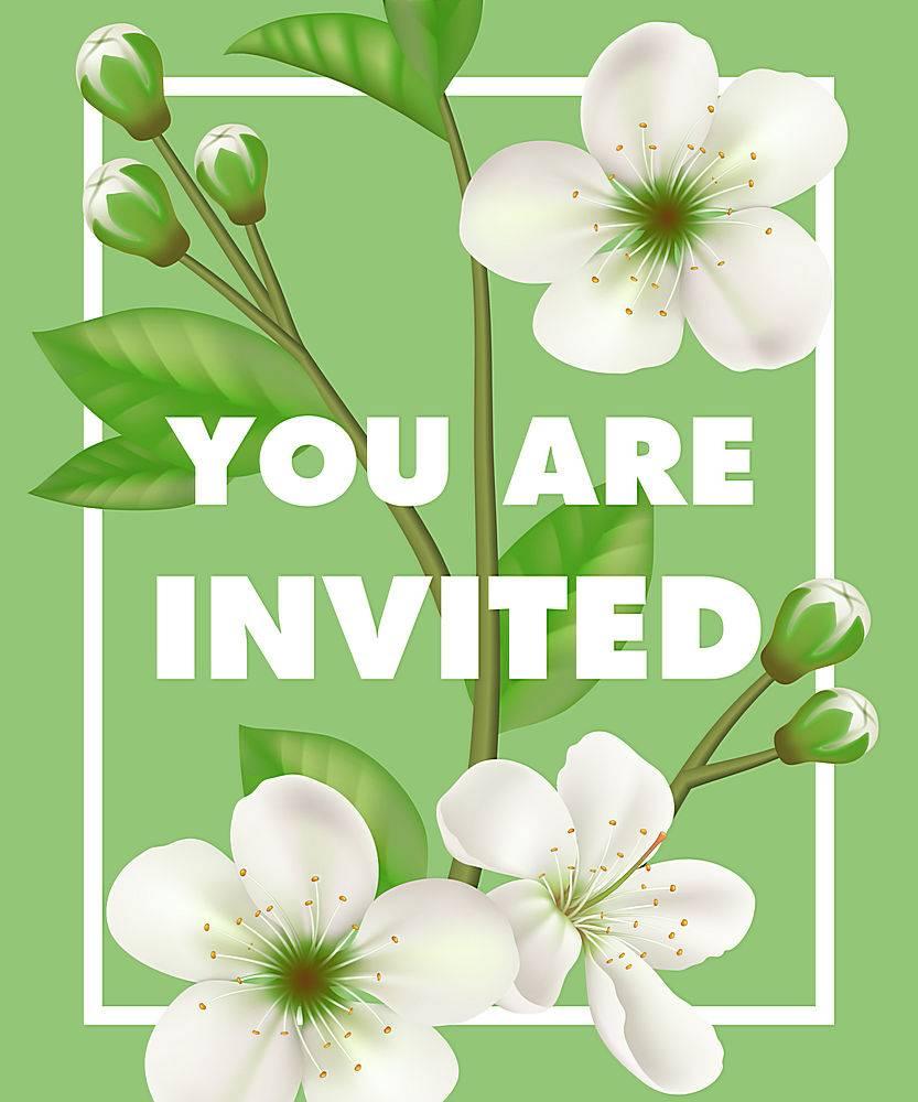 我们邀请您在绿色背景的相框中用白色的花朵_2768256