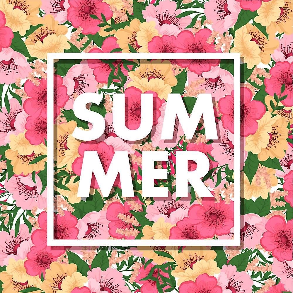 夏季背景_4423042