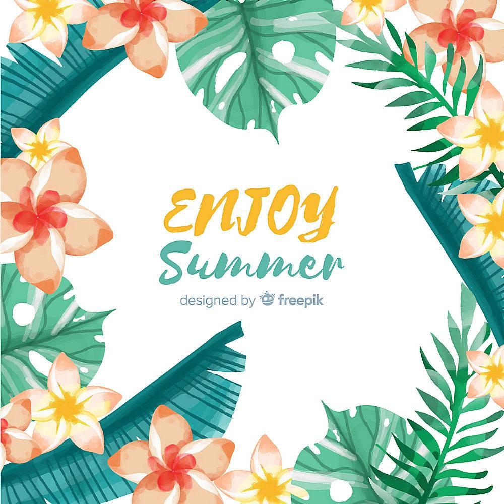 夏季背景热带植物框架_4525094