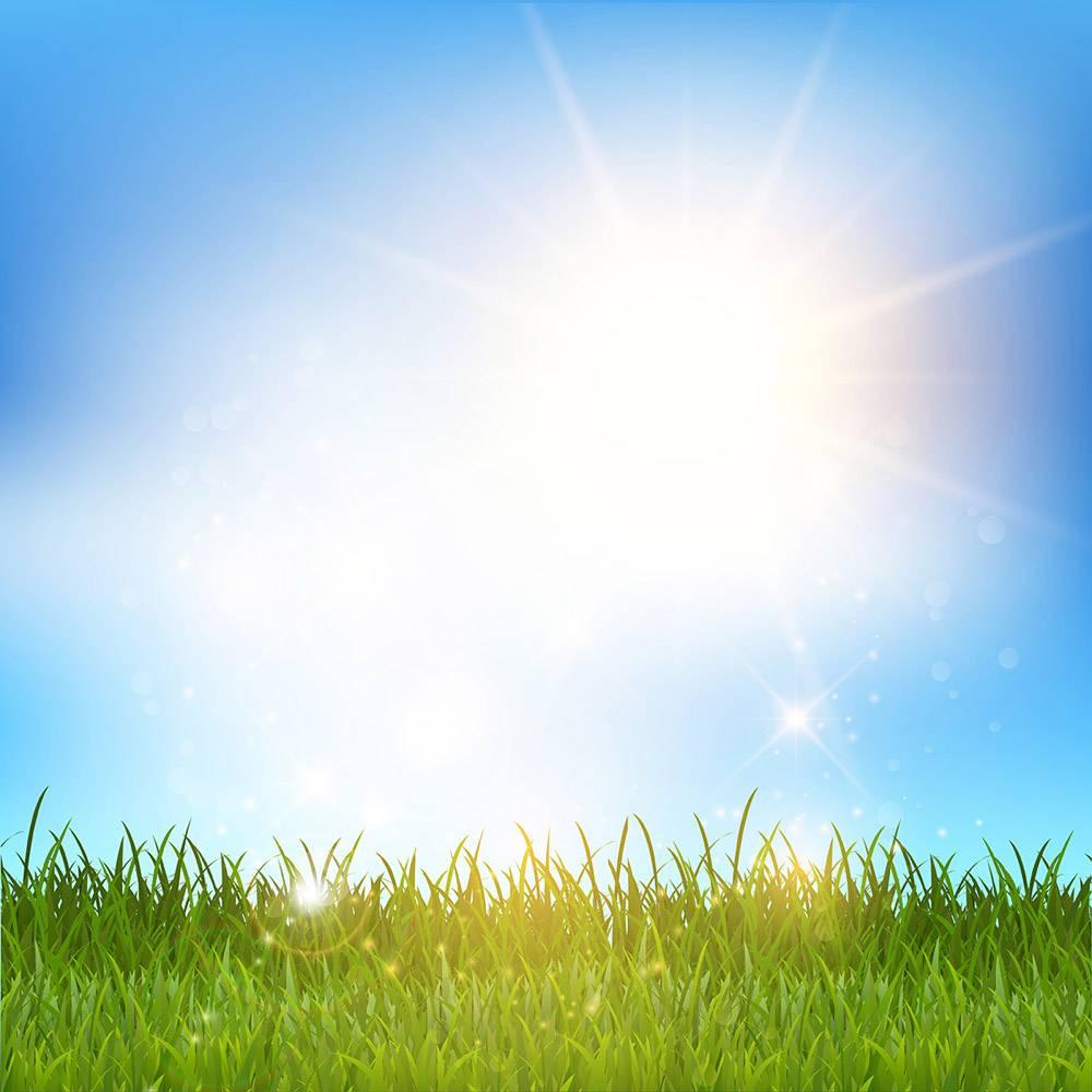 闪亮的青草景观_841418