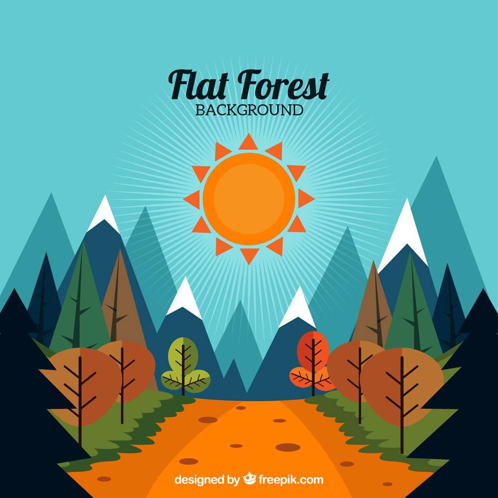 阳光明媚的风景背景下有一条穿过树林的小路_912930