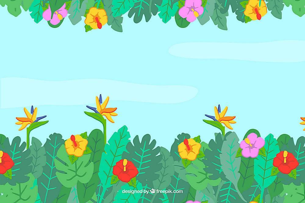 不同植物的热带夏季背景_2200156