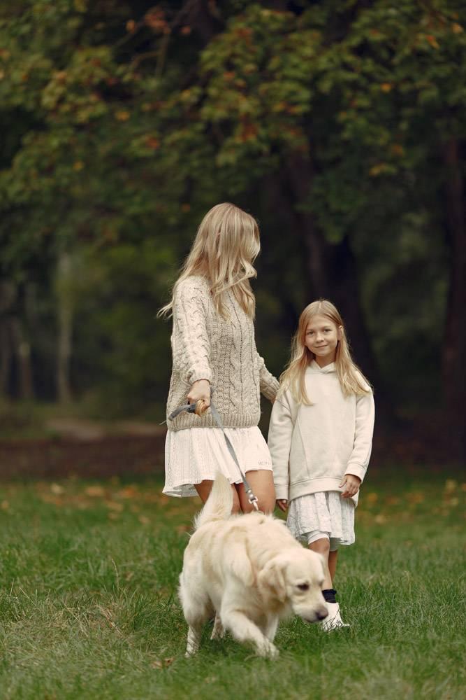 母亲和女儿在玩狗秋天公园的一家人宠物_11190977